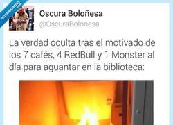 Enlace a Mucho Monster. DEMASIADO Monster por @oscurabolonesa