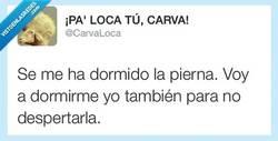 Enlace a Shhh! Habla bajito por si se despierta por @CarvaLoca