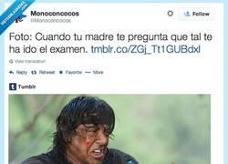 Enlace a Bueno, podrían ir mejor pero bueno por @Monoconcocos