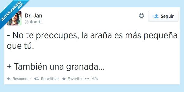 Araña,Arañam Ñam,Granada,Matadora,Pequeña