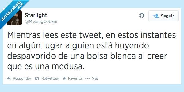 aaaa,bolsa,creer,huir,medusas,miedo,plaga,playa,twitter,verano