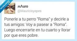 Enlace a Ojalá y fuera verdad por @mauricioyepes