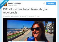 Enlace a Ni Gaza ni mierdas, lo que interesa a los españoles es... por @Cersei_Lanni