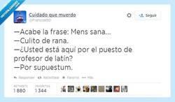 Enlace a Del latín... Idiotum por @Francisk1t0