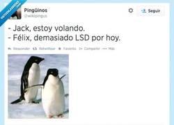 Enlace a Titanic versión pingüina por @wikipingus