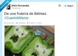 Enlace a Todo Bélmez está encantado, por @Kikinismo