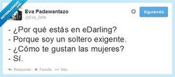 Enlace a Solteros exigentes por @Eva_Zeta,