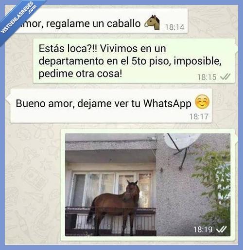 amor,caballo,conseguir,cuernos,hablar,novia,novio,whatsapp