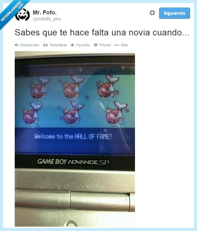 hall of fame,liga,Magikarp,novia,pokemon,tiempo libre