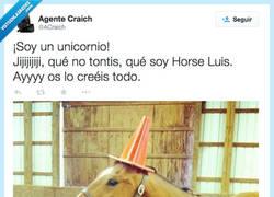 Enlace a El caballo más risotas del establo por @ACraich