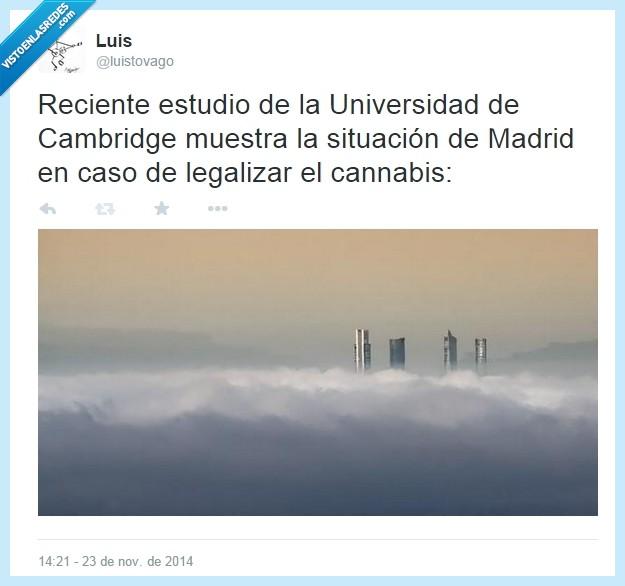 Cambridge,humo,legalización,madrid,niebla
