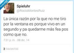 Enlace a Saltar por la ventana no soluciona nada por @RocioMontesRuiz