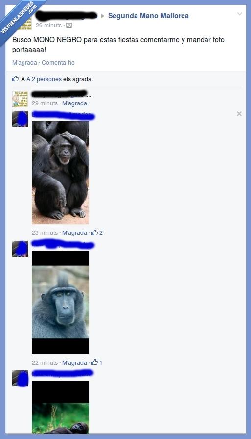 foto,mono,navidad,negro,ropa,segunda mano,simio,traje