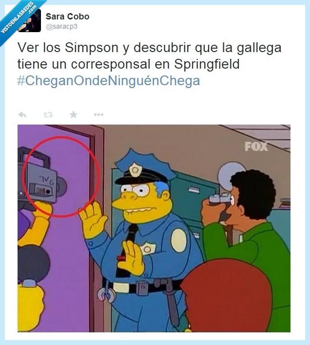 gallega,Los Simpson,simpson,Television Gallega,tvg,wiggum