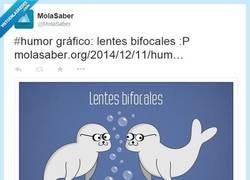 Enlace a Lentes bifocales, literalmente por @MolaSaber