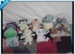 Enlace a ¿Seguro que son todos Pokémon? No te veo muy fan...