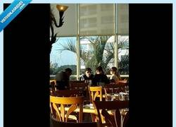 Enlace a Deadmau5 responde a una fan que le sacó una foto mientras comía