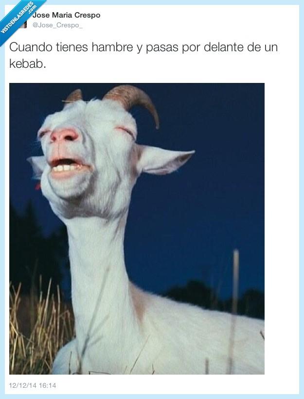 cabra,kebab,oler,Pasear,Twitter