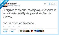 Enlace a No dejes que el dolor se enquiste por @Bichilloverde