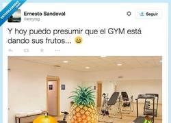 Enlace a Días de gym por @ernyrsg