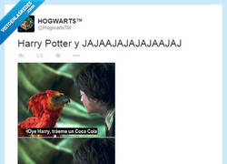 Enlace a Harry Potter y... por @HogwartsTM
