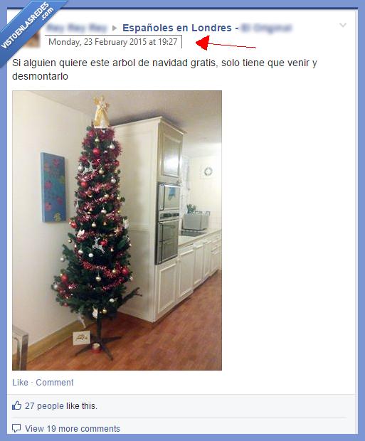 abeto,árbol,decoración,español,febrero,londres,navidad,pereza