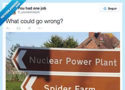 Enlace a Spiderman, el origen por @_youhadonejob