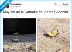 Enlace a Llevan a cuestas al Cristo Risketo y la Santa de las Apetinas por @Yuxtagoras