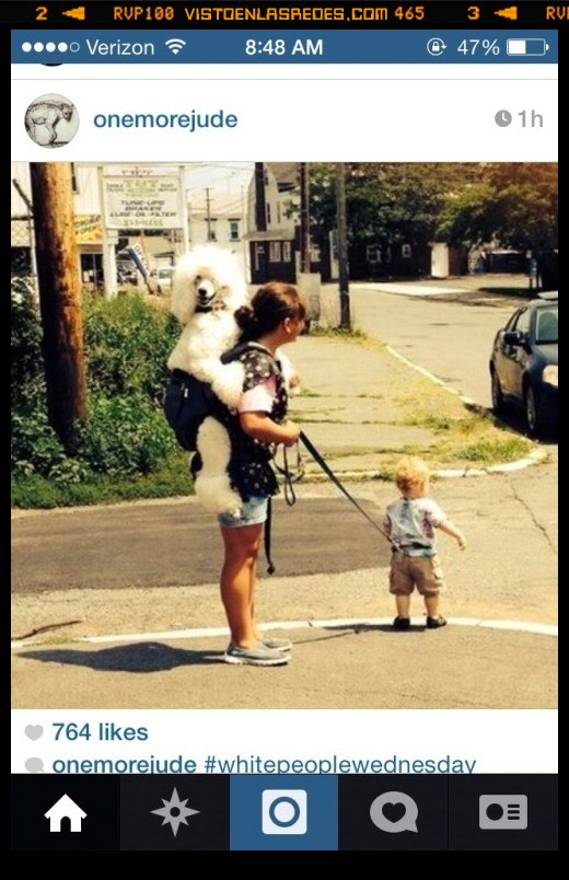 atar,cargar,correa,hijo,llevar,mochila,perro,whitepeoplewednesday
