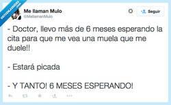 Enlace a ¡Esto se va de madre! por @MellamanMulo