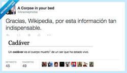 Enlace a Wikipedia, fuente de conocimiento sorprendente por @Aracnephobia
