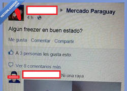 Enlace a Freezer revive, eso está claro