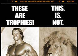 Enlace a Arnord Schwarzenegger ha subido esto a su instagram. ES EL AMO