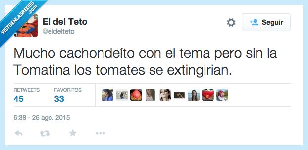 extinguir,taurino,tauromaquia,tema,tomate,tomatina,toro