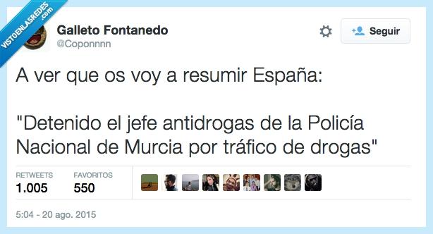 antidrogas,detener,detenido,drogas,España,jefe,Murcia,nacional,noticia,policia,real,resumen,resumir,titular,tráfico