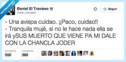 Enlace a Paco, el más valiente de su pueblo por @don_travieso