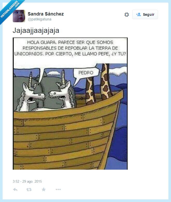 arca de Noé,hola guapa,machos los dos,unicornios