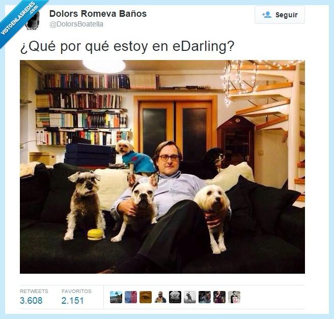 e-darling,Marhuenda,Paco,perretes,soltero exigente