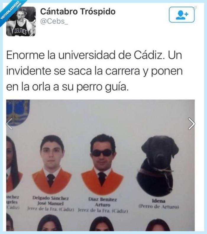 grande,Idena,invidente,lazarillo,perro,titulación,universidad