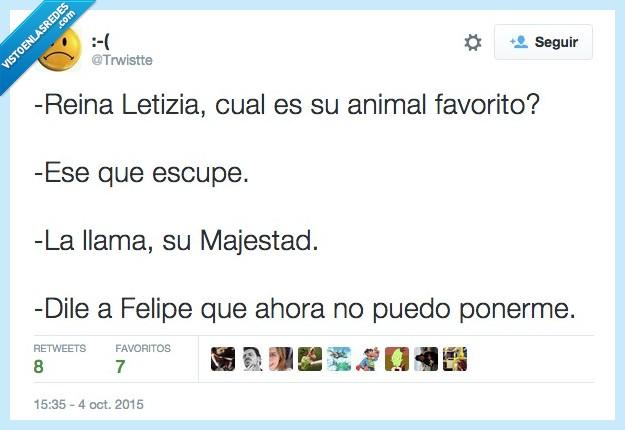 animal,escupe,escupir,favorito,Felipe,Letizia,llama,Reina,su majestad