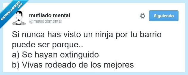camuflaje,esconder,escondido,extinguidos,invisible,japon,mejor,ninjas