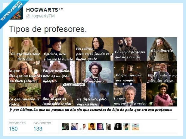 Dolores Umbridge,Dumbledore,Hagrid,Harry Potter,hogwarts,Lupin,McGonagall,profesores,Snape,tipos,Trelawney