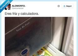 Enlace a Así eres tú, fría y calculadora por @percumarcos