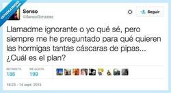 Enlace a ¿Alguien conoce su plan maligno? por @SensoGonzalez