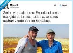 Enlace a Con experiencia previa, se les ve buenicas personas por @Mongolear