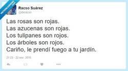 Enlace a Si al final estos poemas traerían problemas... por @itxracso