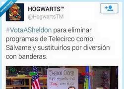 Enlace a Mucho mejor que Sálvame, dónde va a parar por @HogwartsTM