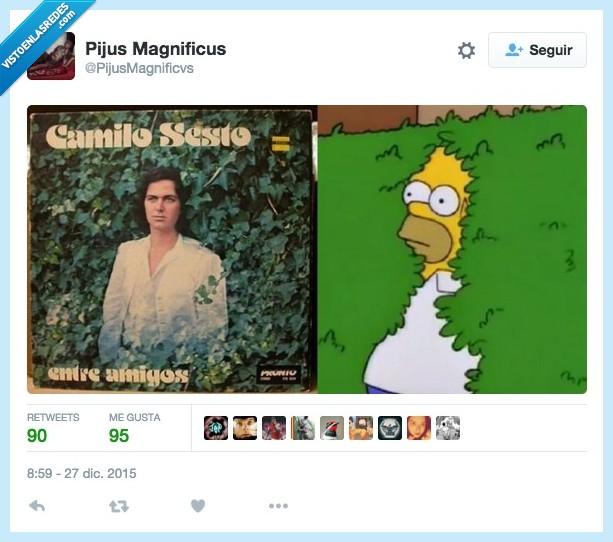 arbusto,camilo sesto,entre amigos,esconder,escondido,Homer,portada,Simpson