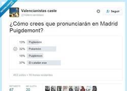 Enlace a Se aceptan apuestas por @Valencianistasc