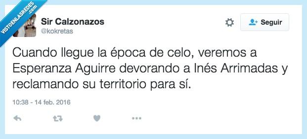 atacar,ataque,celo,Esperanza Aguirre,Inés Arrimadas,reclamando,reclamar,territorio